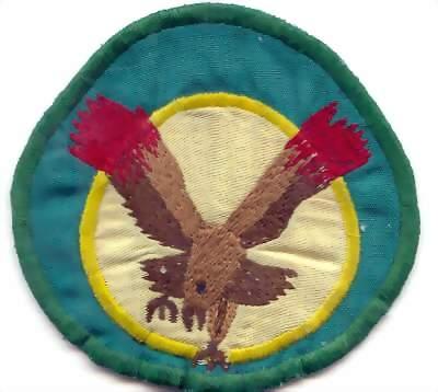 Emblema dos Águias de Fogo